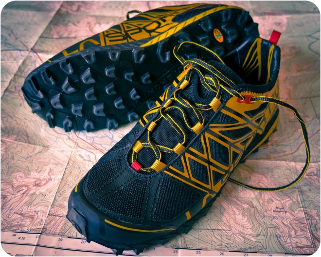 In other news, I'm looking foward to giving these guys a spin... La Sportiva Anakonda mountain-running flats.