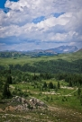 Jogging the white ribbon which leads back to Sunshine Meadows from the top of Quartz Ridge. Spectacular trail running!